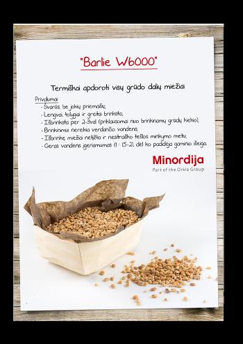 Miežiai Barlie W6000